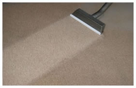 Master Cleaners residential and commercial carpet cleaning company